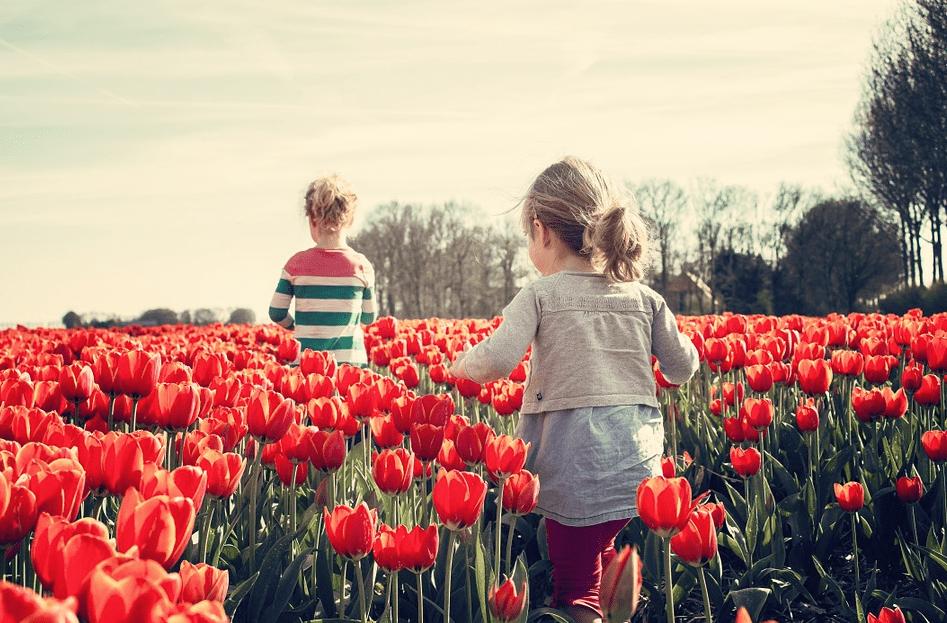 niños creciendo en inteligencia emocional